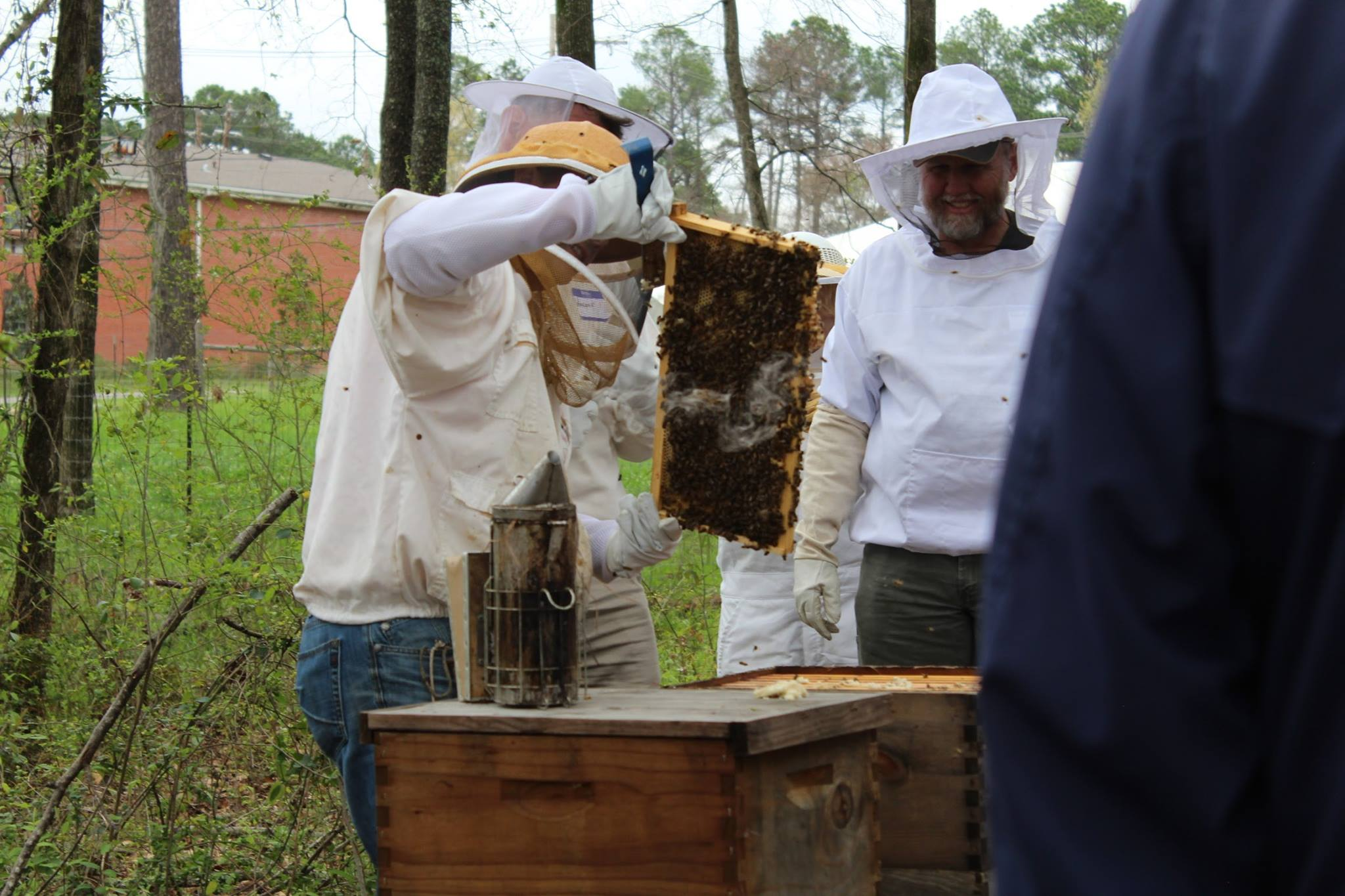 home central mississippi beekeepers association